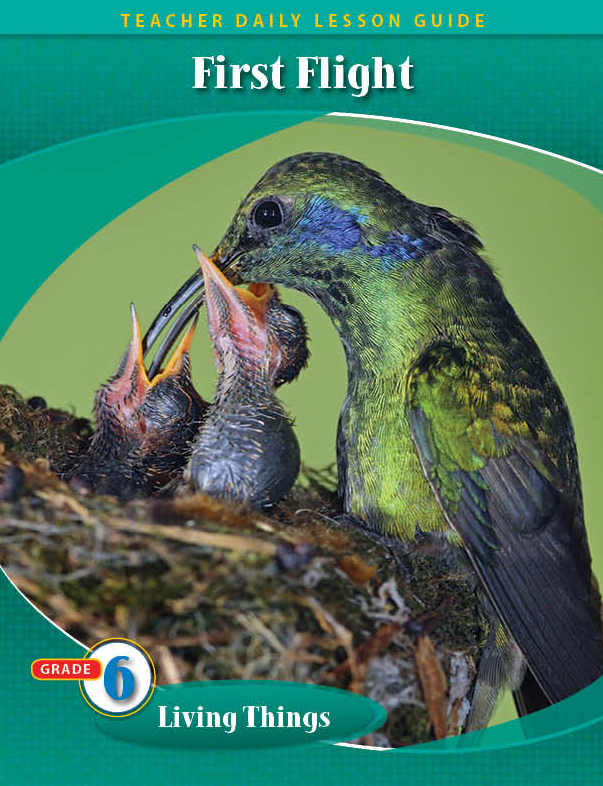 Pathways2.0 Grade 6 Living Things Unit: First Flight (A Mother Hummingbird's Story) Daily Lesson Guide + 5 Year License