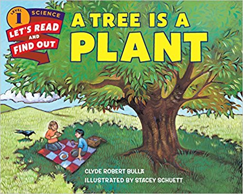 Pathways 2.0: Grade 1 A Tree Is A Plant Tradebook