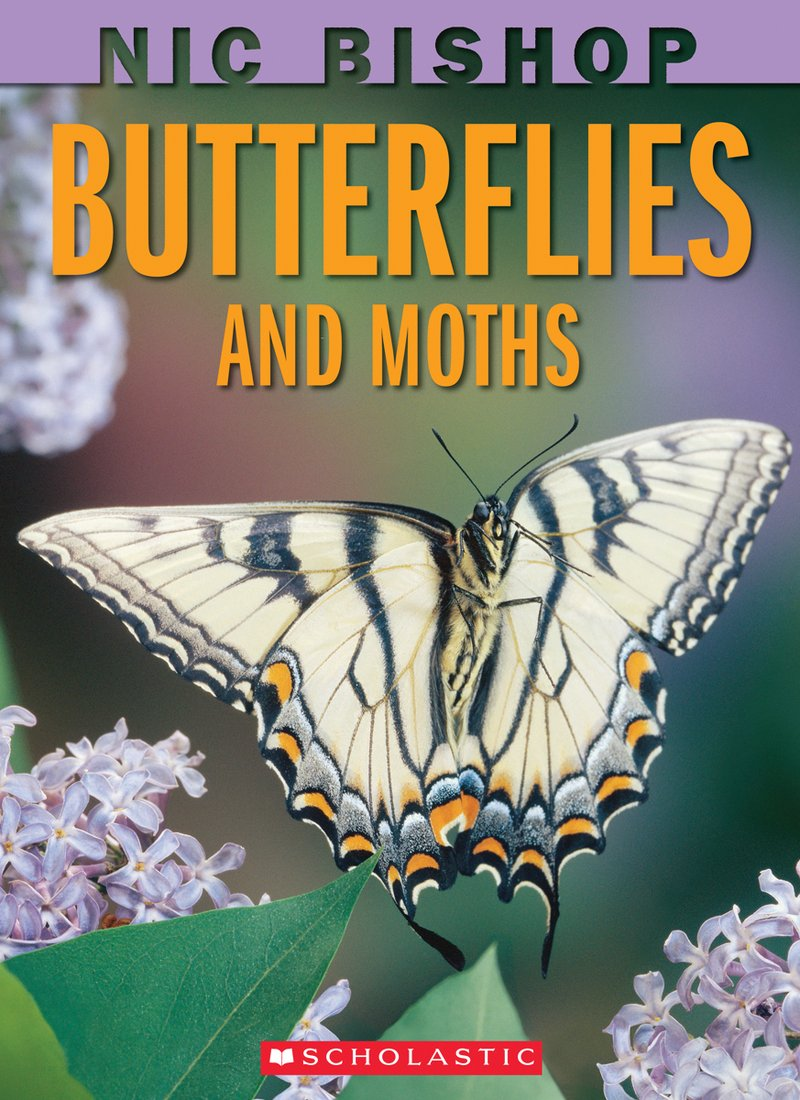 Pathways 2.0: Grade 5 Butterflies and Moths Tradebook