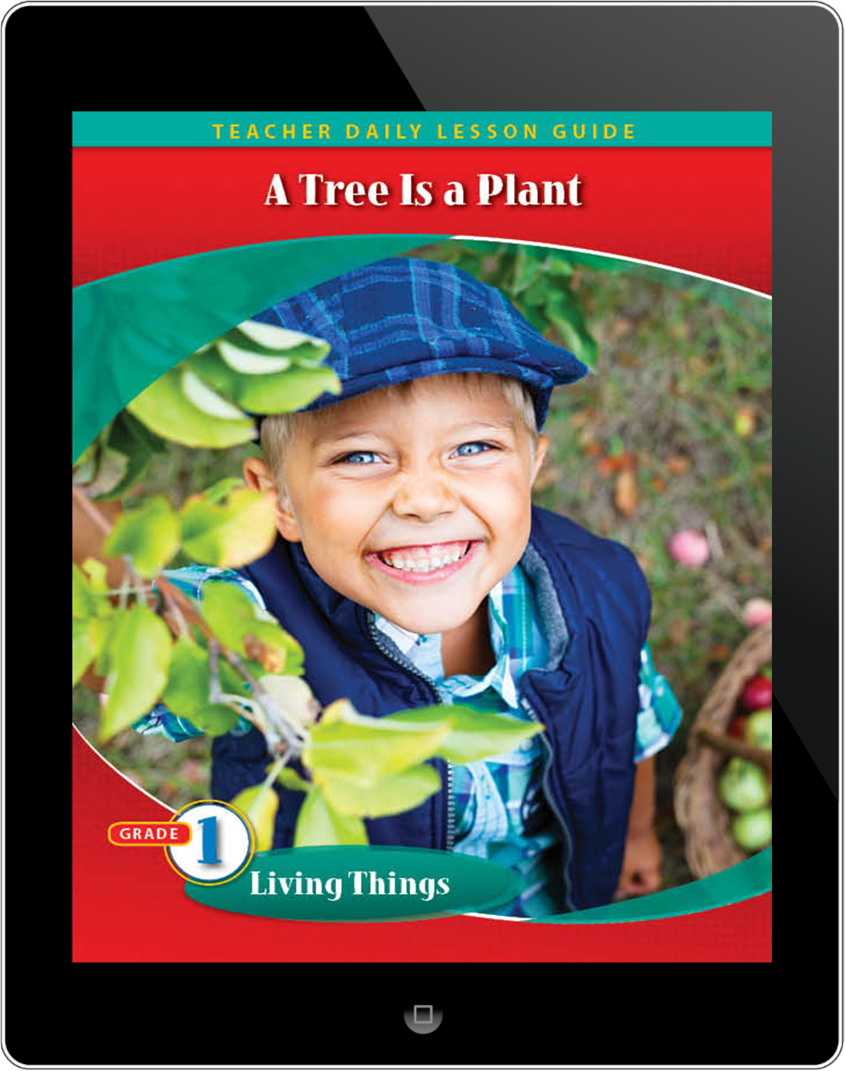Pathways2.0 Grade 1 Living Things Unit: A Tree Is a Plant Daily Lesson Guide 5 Year License