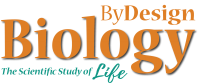 ByDesign Biology